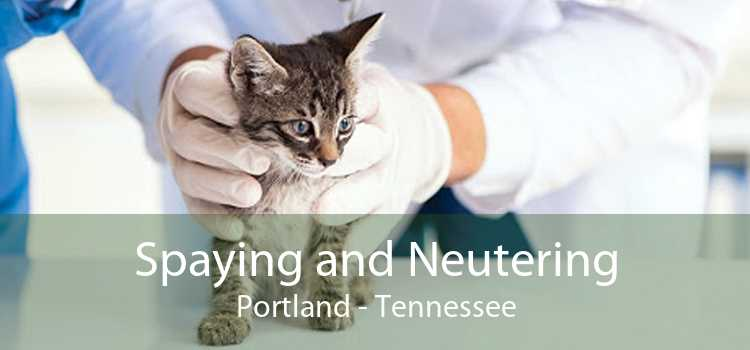 Spaying and Neutering Portland - Tennessee