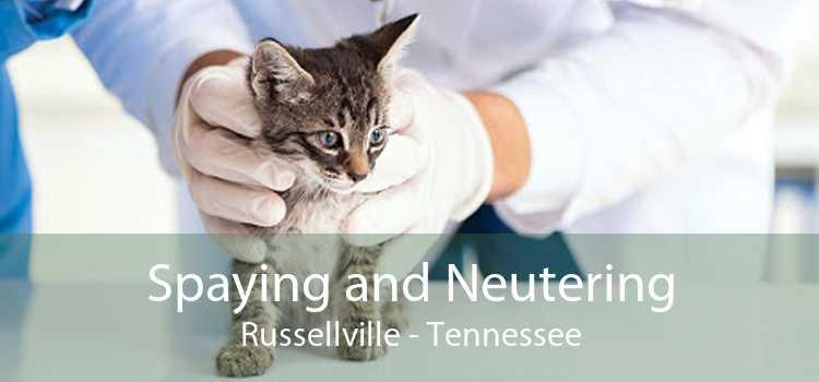 Spaying and Neutering Russellville - Tennessee