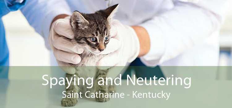 Spaying and Neutering Saint Catharine - Kentucky