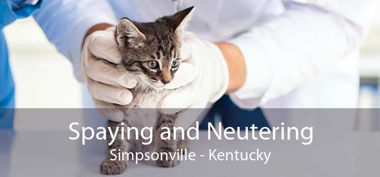 Spaying and Neutering Simpsonville - Kentucky