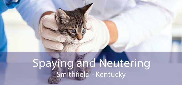 Spaying and Neutering Smithfield - Kentucky