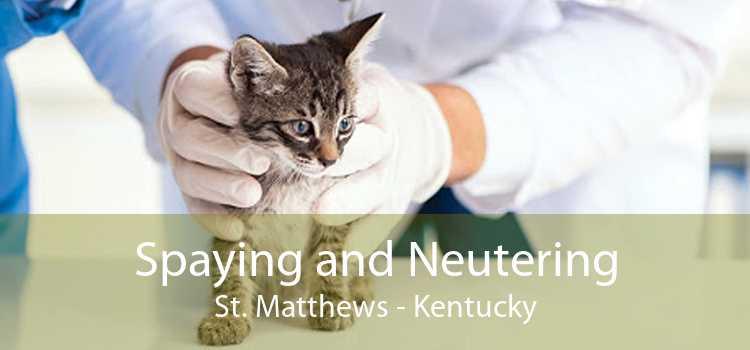 Spaying and Neutering St. Matthews - Kentucky