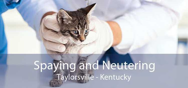Spaying and Neutering Taylorsville - Kentucky