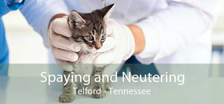Spaying and Neutering Telford - Tennessee