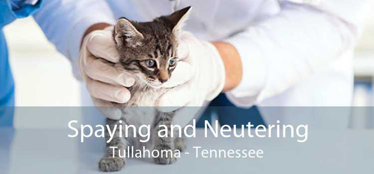 Spaying and Neutering Tullahoma - Tennessee