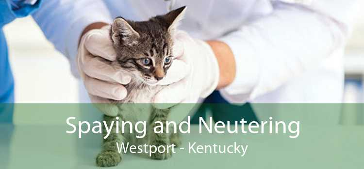 Spaying and Neutering Westport - Kentucky